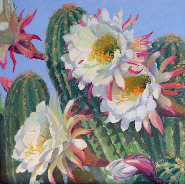 Cactus Flower 1 Art | Diehl Fine Art