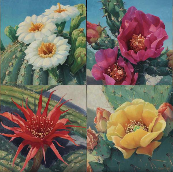 Cactus Flowers 7 Art   Diehl Fine Art