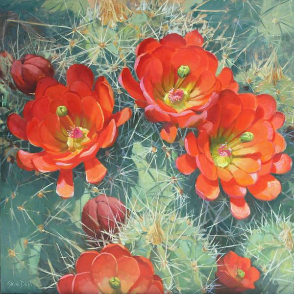 Cactus Flower 8 Art   Diehl Fine Art