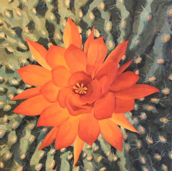 Cactus Flowers 10 Art   Diehl Fine Art