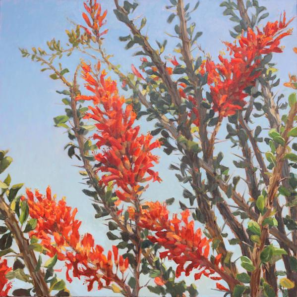 Cactus Flowers 11 Art | Diehl Fine Art