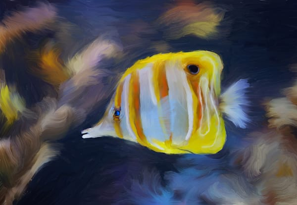 Copperband Butterfly Art | Rick Peterson Studio