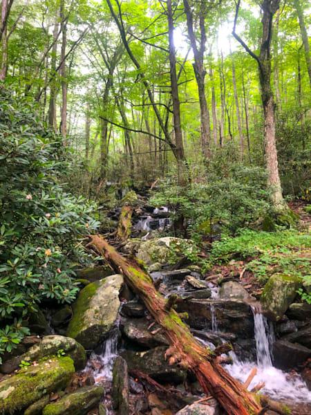 Flat Creek Cascades Photography Art | Blue Ridge Zen