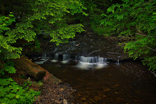 Cascades on a creek in Ricketts Glen, Pennsylvania