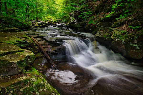 Conestoga Falls, Ricketts Glen, Pennsylvania