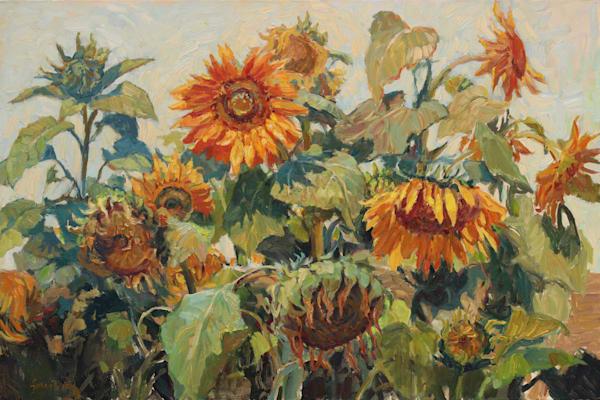 Sunflower Noon Art | Diehl Fine Art