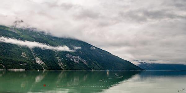 Fishing For Salmon Art   Alaska Wild Bear Photography