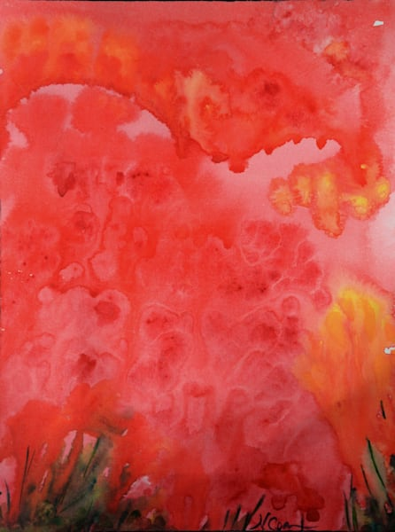 Coquelicots (Poppies) | Norlynne Coar Fine Art