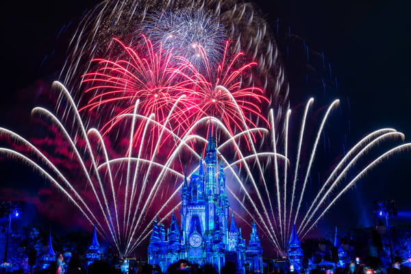 2021 Happily Ever After 5 Photography Art | William Drew Photography