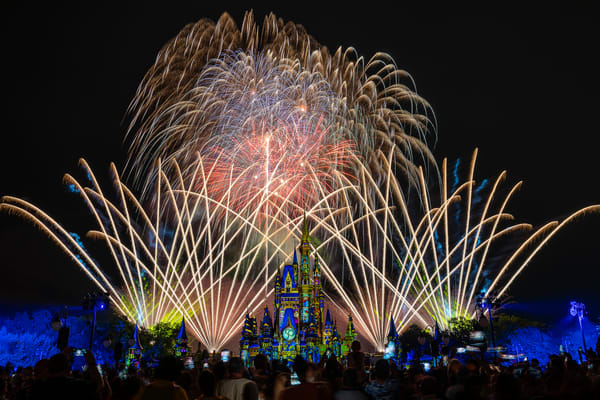 2021 Happily Ever After 24 Photography Art | William Drew Photography