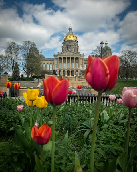 """Iowa Capitol In Spring 17""""X25"""" Embossed Canvas Wood Frame Print 