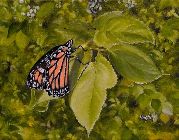 Skeik Monarch Art | thecalliart