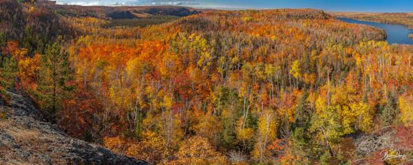 North Shore Autumn