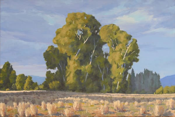 Living In The Light Of Sunshine Art | Diehl Fine Art