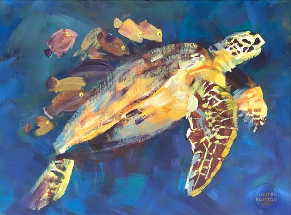 Hawksbill   It S Spa Day Limited Edition Of 5 Art | susanclare