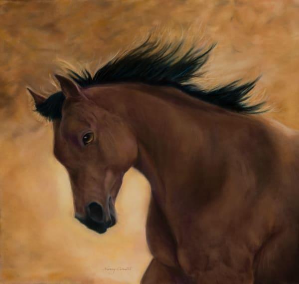 My Girl Lark by Nancy Conant is a Bay mare horse