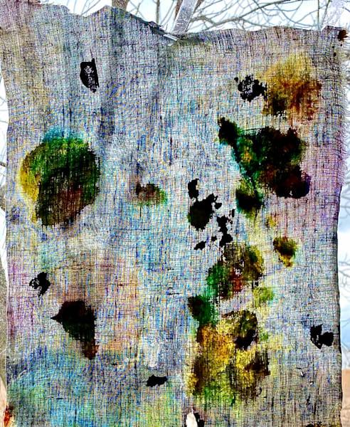 Nature's Shroud Art   Ginny Krueger
