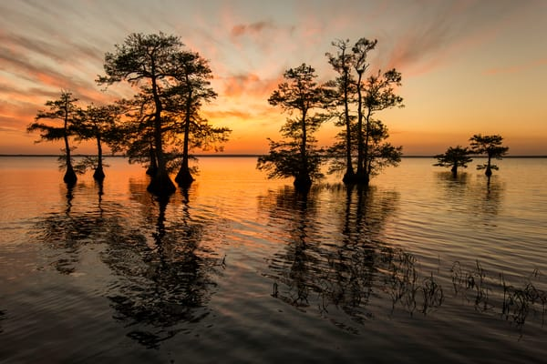 Sunset At Lake Blue Cypress B8 R0250 Lake Blue Cypress Indian River County Usa Photography Art   Clemens Vanderwerf Photography