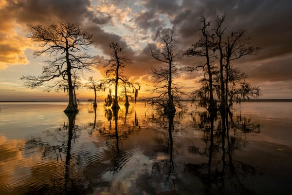 Sunset On Lake Blue Cypress 83 A3155 Lake Blue Cypress Fl Usa Photography Art   Clemens Vanderwerf Photography