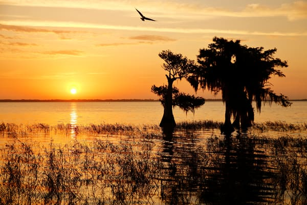 Sunrise Over The Lake S6 A6943 Lake Blue Cypress Fl Usa Photography Art   Clemens Vanderwerf Photography