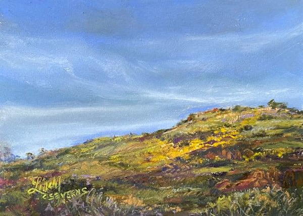 Broomweed Heralds Autumn, Original Pastel Art | Lindy Cook Severns Art