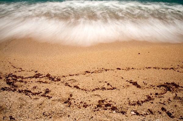 Tracks In The Sand Art   Norlynne Coar Fine Art