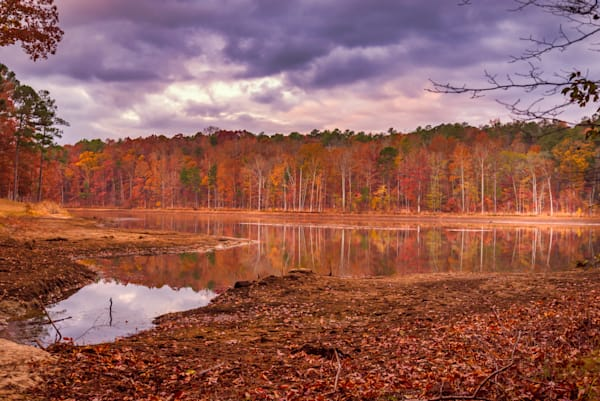 Morning Reflections   Susan J Photography   Georgia