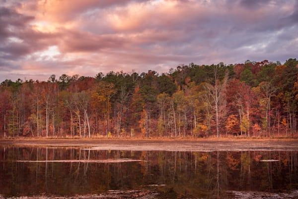 Soft Morning Light   [Georgia landscape]   Susan J Photography