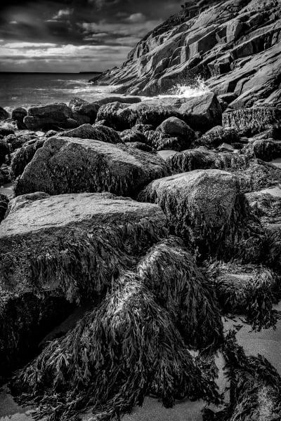 Rocks along the craggy coast of Maine