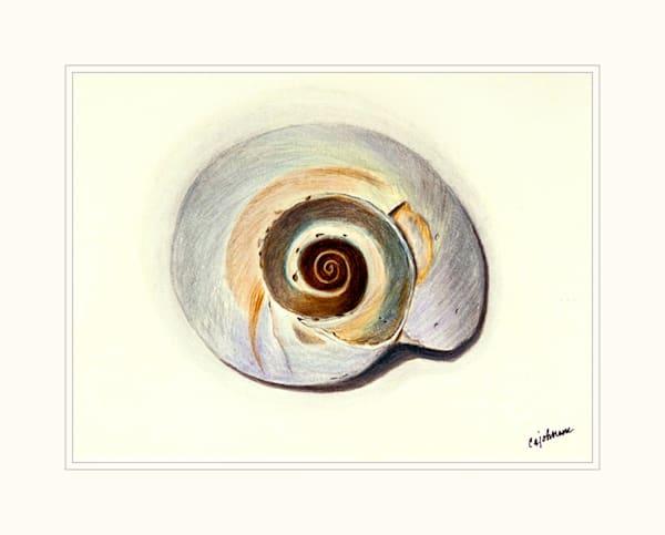 Nautilus Mini High Resolution Print
