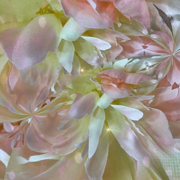 Circular Chaos Photography Art | Kathleen Messmer Photography
