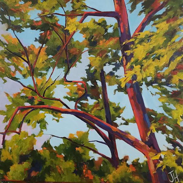 Looking Up Ii  Art   Jenn Hallgren Artist