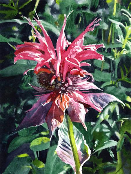 Wild & Free  Art   Machalarts Watercolor Studio