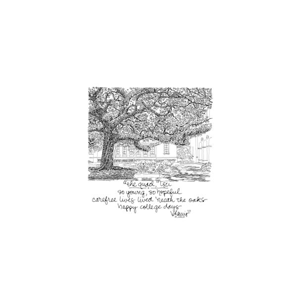 """the quad,"" louisiana state university:  tiny haiku art prints in elegant pen available for purchase online"