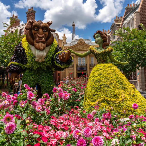 Beast And Belle Topiaries In France 2021 Photography Art | William Drew Photography