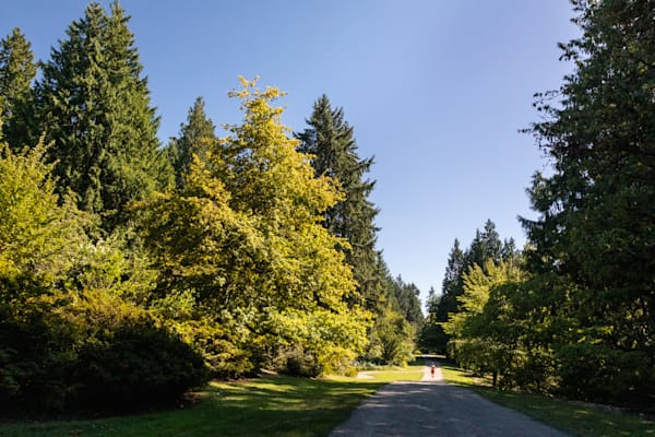 Seattle Arboretum Run Photography Art | Leiken Photography