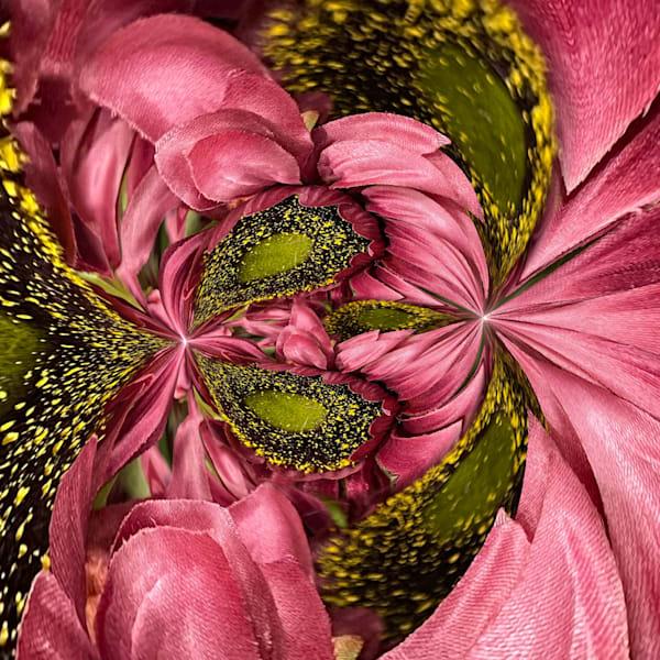 Circular Pink And Gold Photography Art | Kathleen Messmer Photography