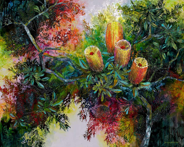 Banksia Hinterland