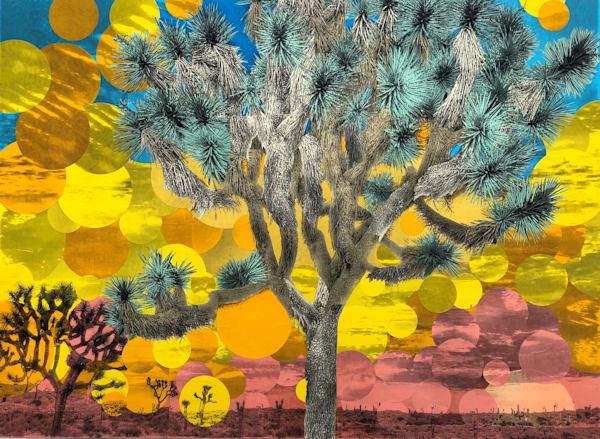 Joshuatree Art | nicollettesmith