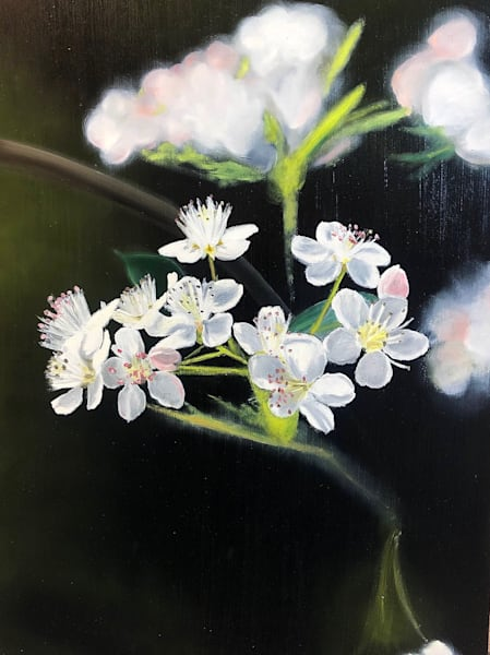 Study Of Flowering Tree Art | Brendan Kramp Studio & Workshop