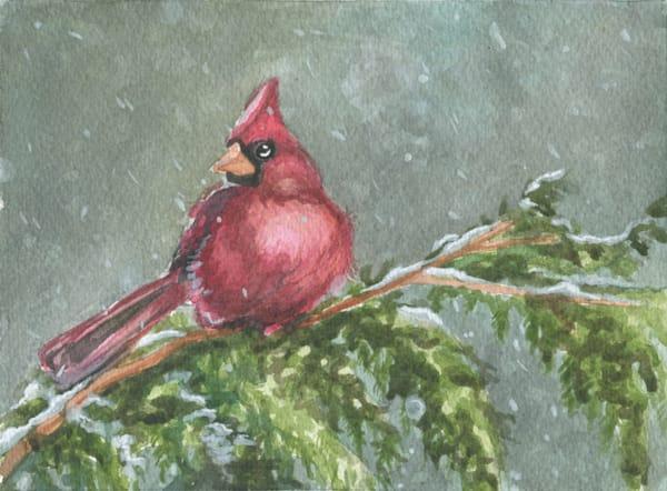 Snowy Cardinal Original