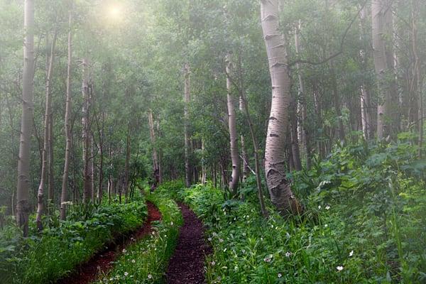 Path of Hope