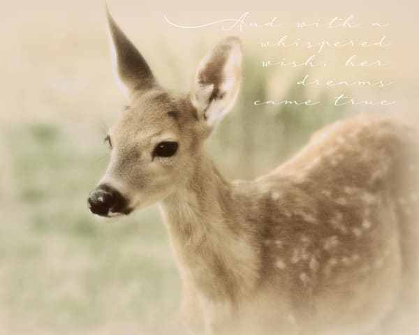 Sparkly Fawn Wish Art