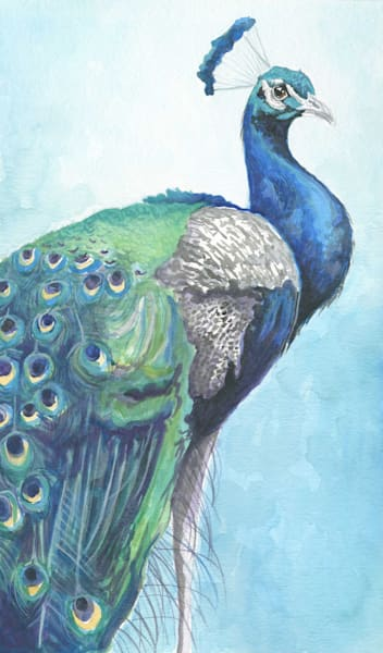 Peacock in Blue Original