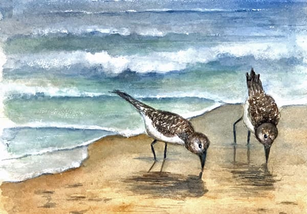 """""""Sandpipers on the Shoreline"""" Connie Marshall, Watercolor"""