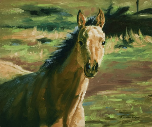 "Raymond Wattenhofer Fine Art Print ""Bright Eyed"""