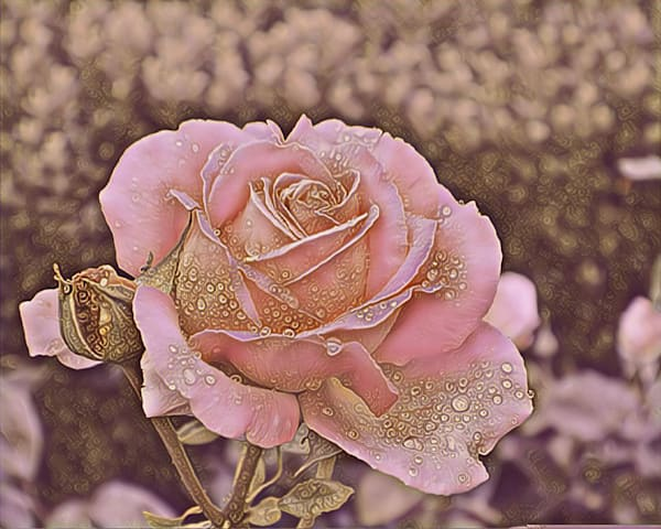 Gold Flecked Rose Photography Art | KAT MILLER-PHOTO ARTIST