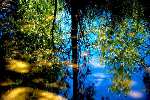 Reflection In The Stream Art   Norlynne Coar Fine Art