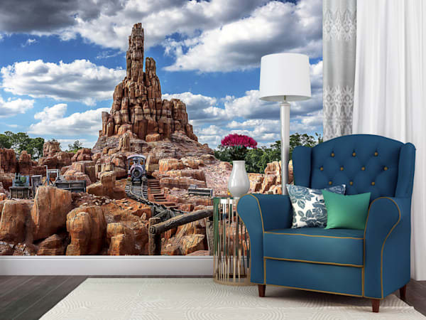 The Wildest Ride In The Wilderness   Magic Kingdom Wall Mural Photography Art | William Drew Photography