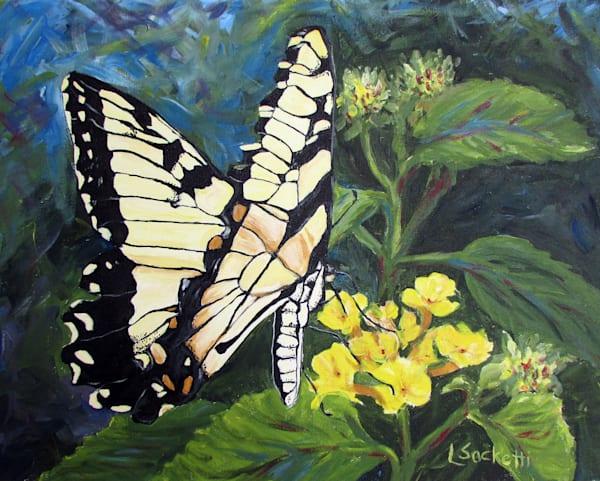 Tiger Swallowtail Art | Linda Sacketti